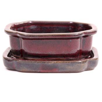 gr/ün Schale rund 16 /Ø x 5,5 cm mit Untersetzer 23163 Bonsai